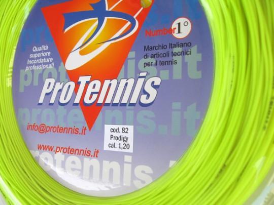 Protennis corda squash Prodigy